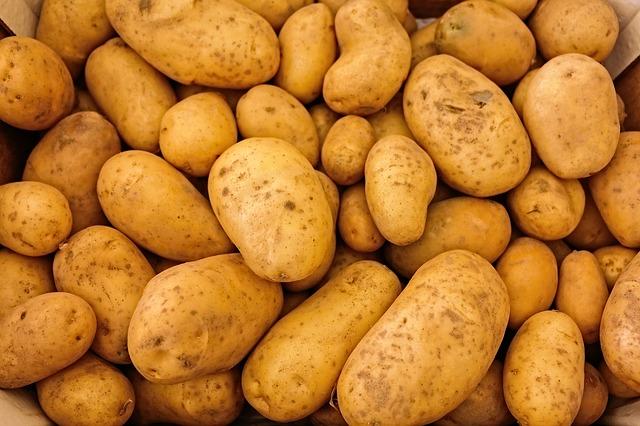Jak uskladnit brambory?