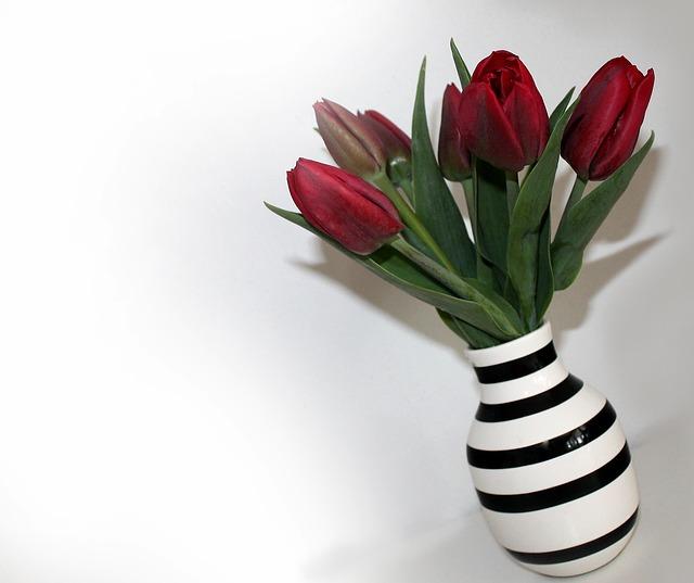 Jak si udržet tulipány ve váze co nejdéle hezké
