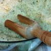 Prostorová aromaterapie a inhalace