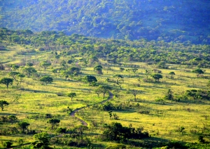 Panenská krajina Afrika