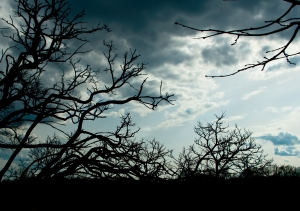 Pesimismus a smutek