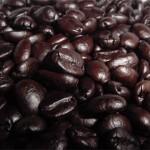 Je libo cibetková káva Kopi Luwak?