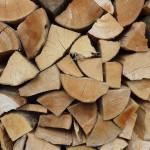 Topíte dřevem? A víte, jaký je rozdíl mezi tvrdým a měkkým?