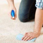 Děsí vás stále více skvrn na vašem koberci? Co s nimi dělat?